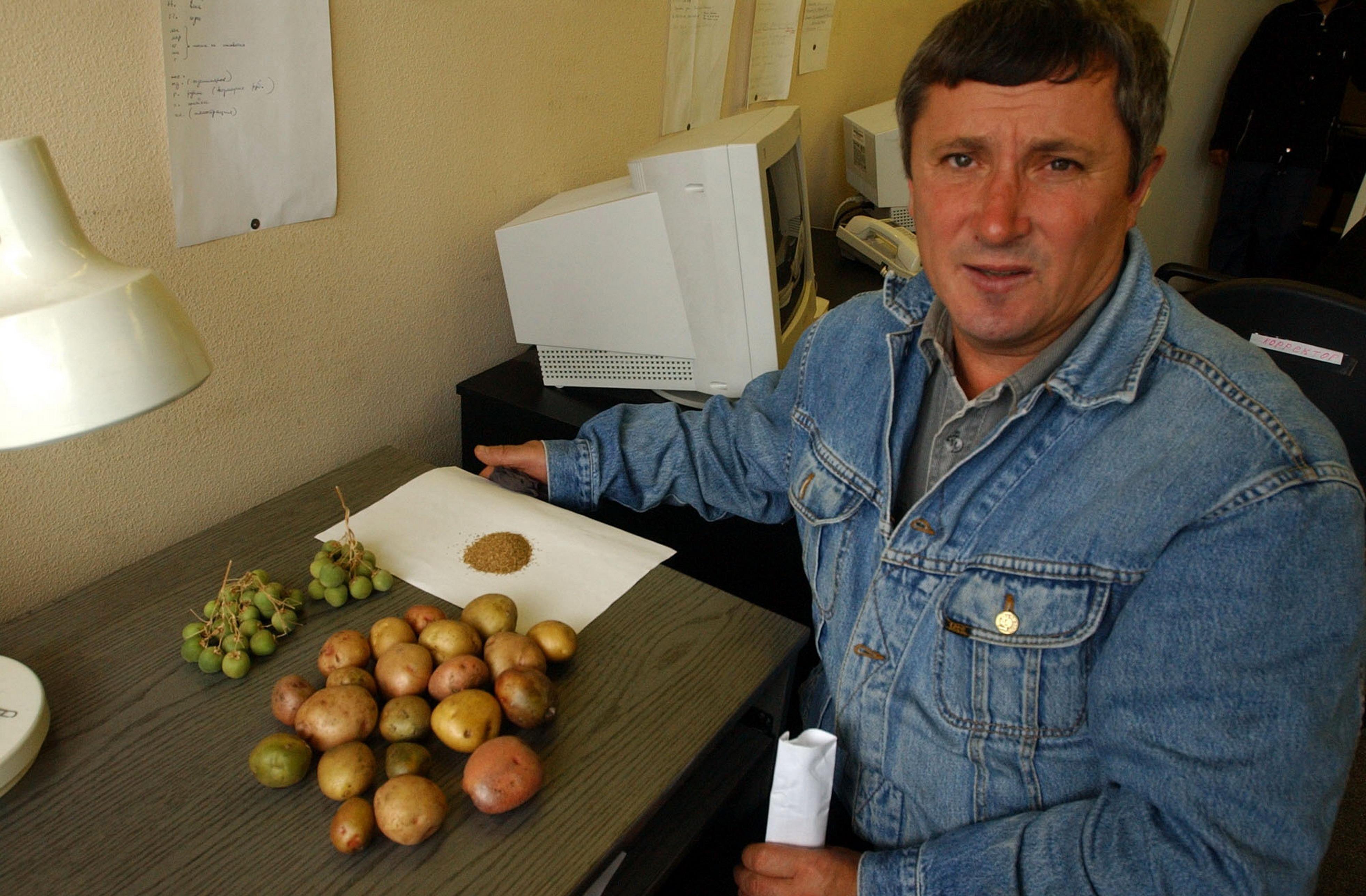 Organizatsiya-vnutrihozyajstvennogo-semenovodstva-kartofelya