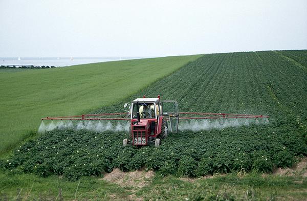 pestitsidy