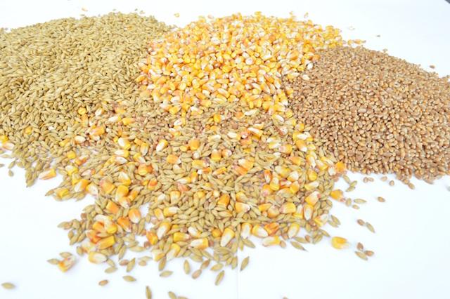 grains-1173812