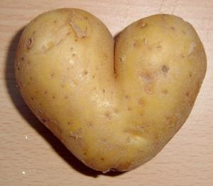 Potato_heart_mutation1-300x262