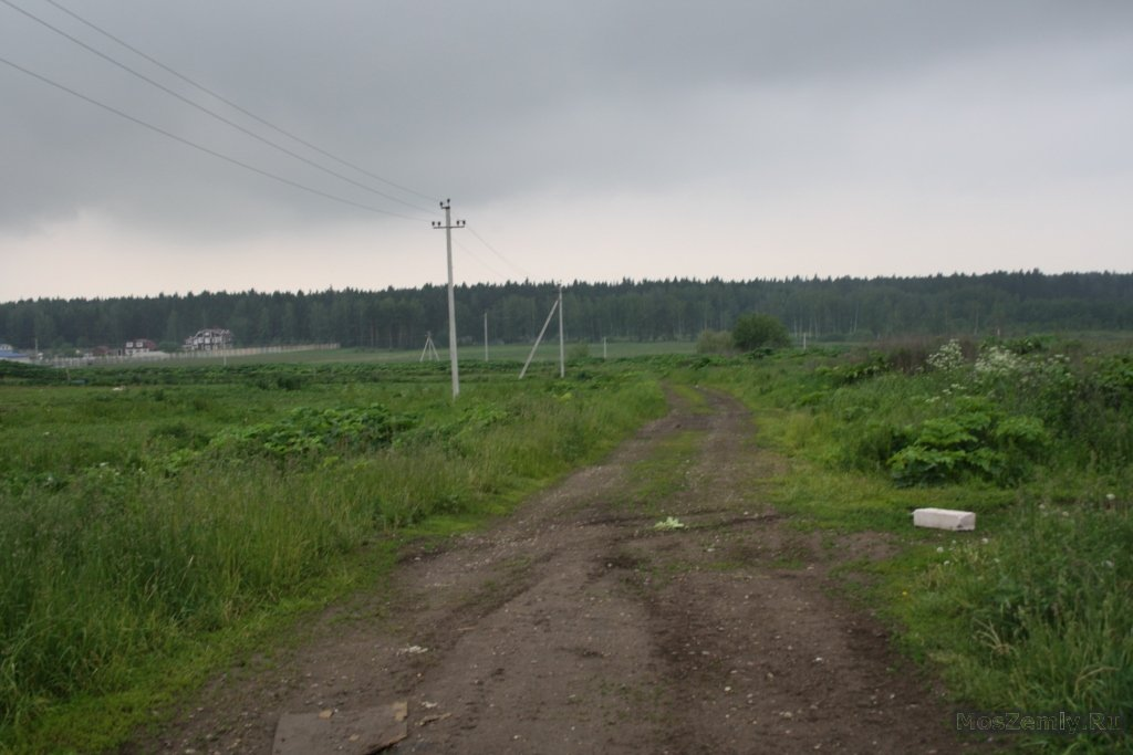 1369147162_obl.-moskovskaya-r-n-dmitrovskiy-gpos-nekrasovskiy-d.-gorki-suharevskie-ul.-slobodka-dom-34