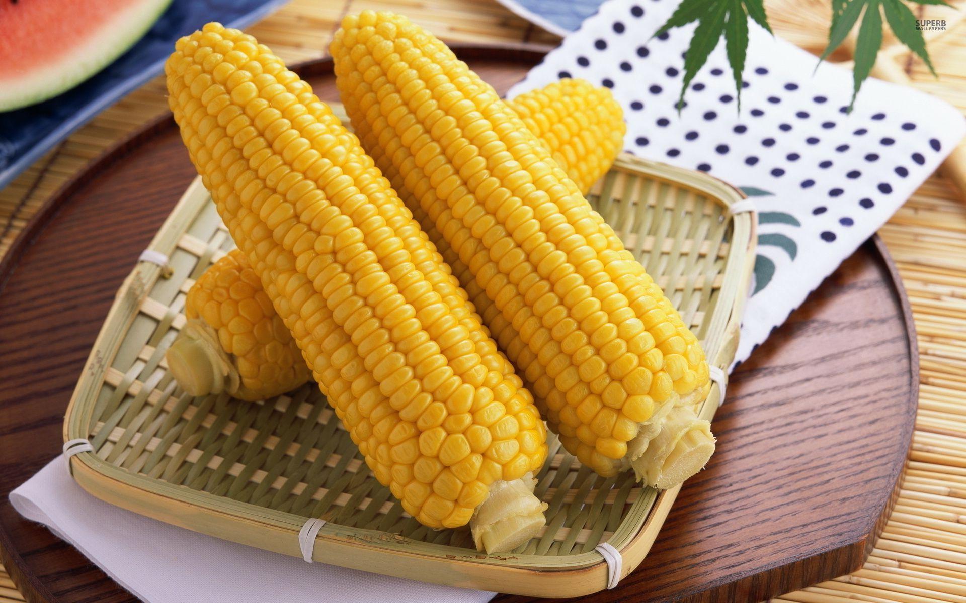 Kukuruza-pochatki-foto