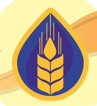 Logotip-Region-partner