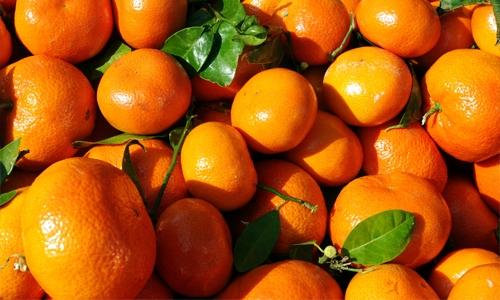 1452769612_mandarini