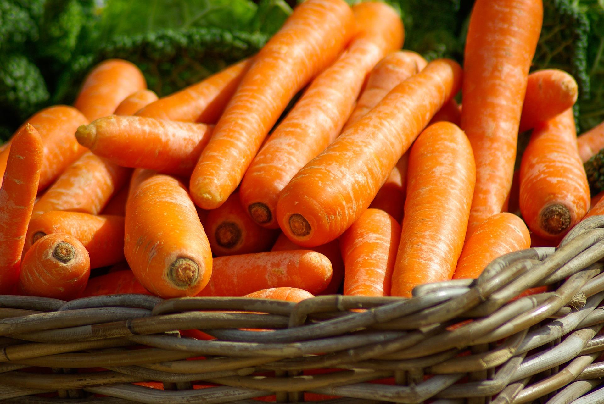 carrots-673184_19203