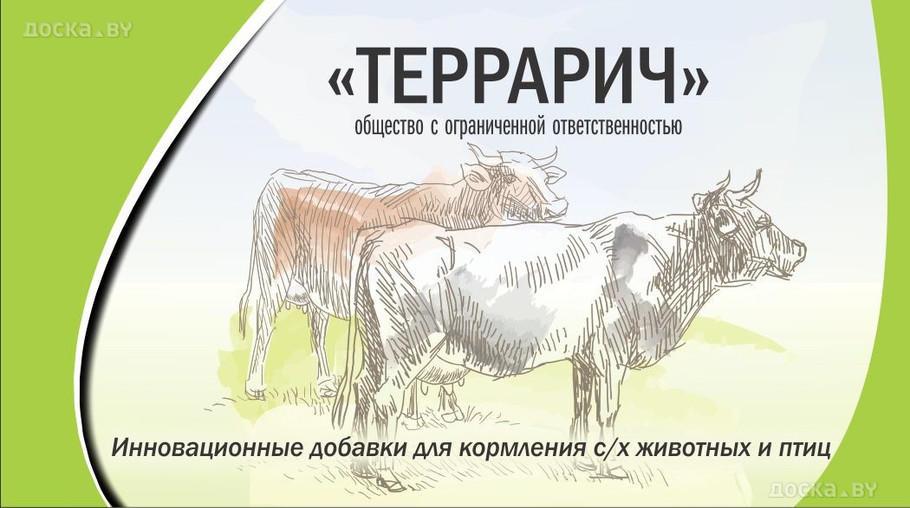 agriculture-animal-husbandry-food-113054.800