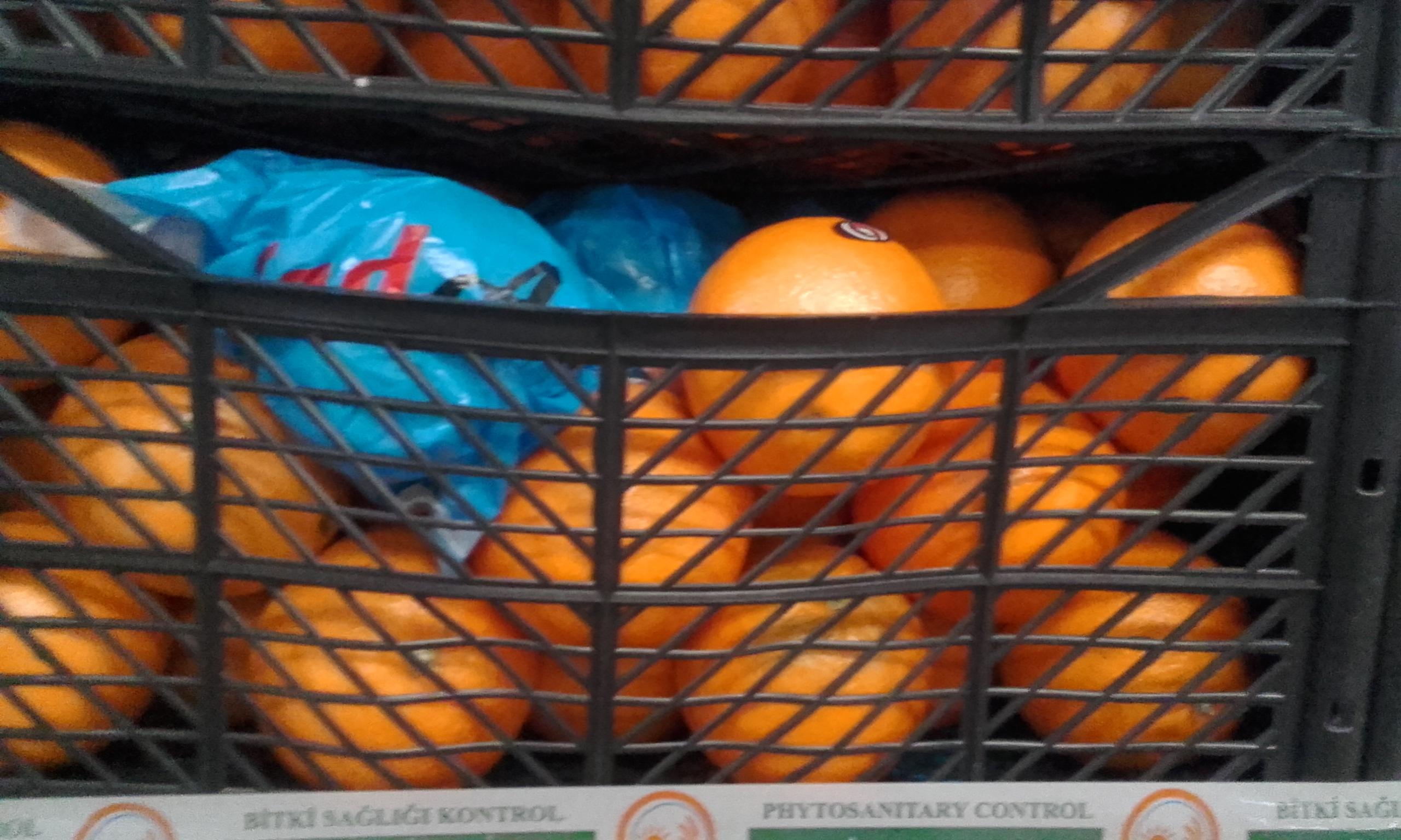 apelsin-2