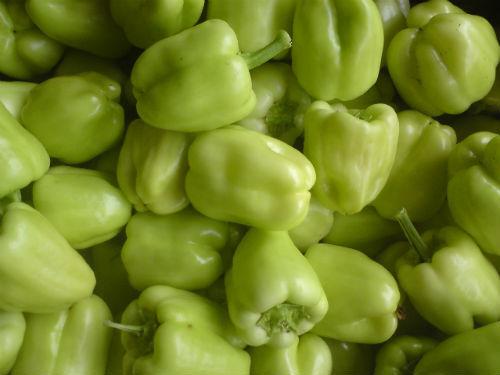 pepper1-1
