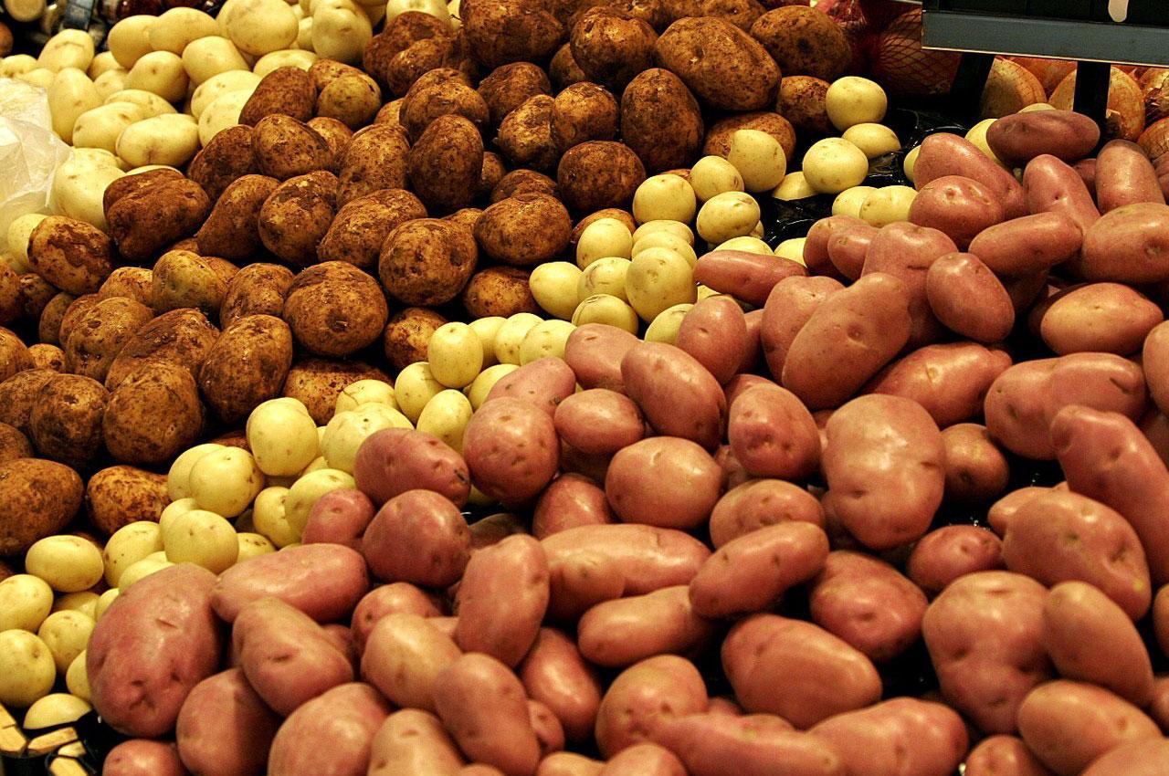 potato_PNG5150