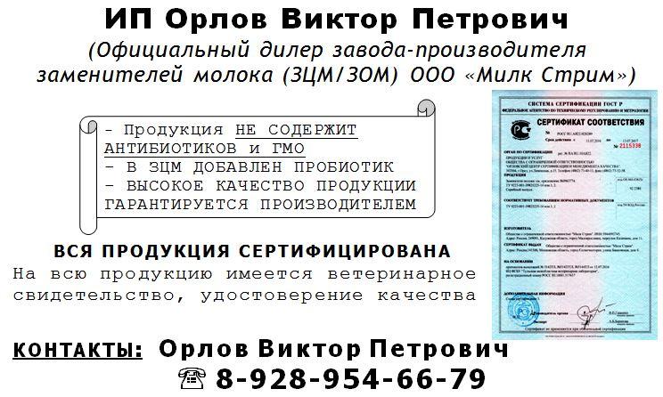 IP-Orlov-V.P.-kontakty
