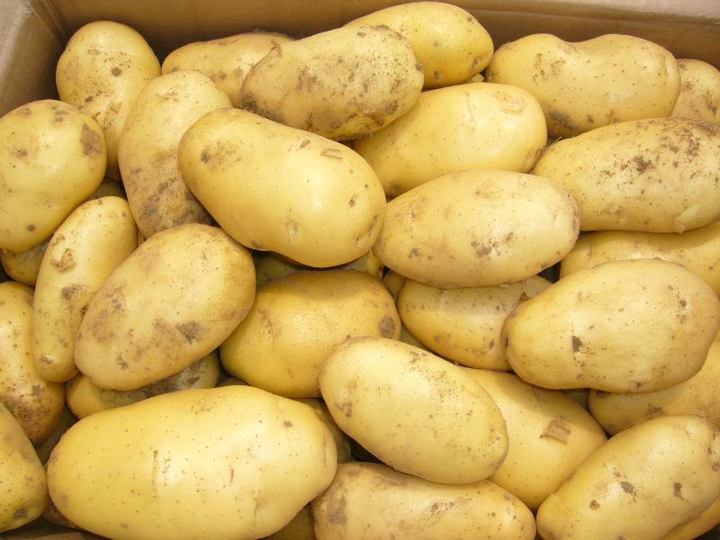 Kartofel_Izrail_meshok_18kg