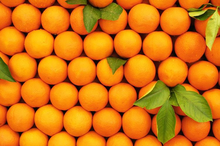 big_0Oranges261112