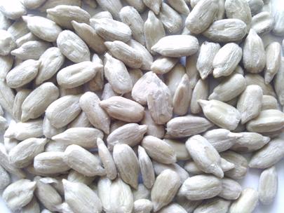 free-seed