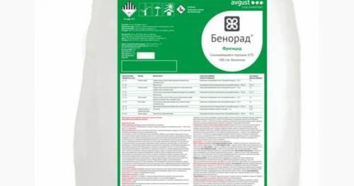 kupit-fungicid-benorad-500x264