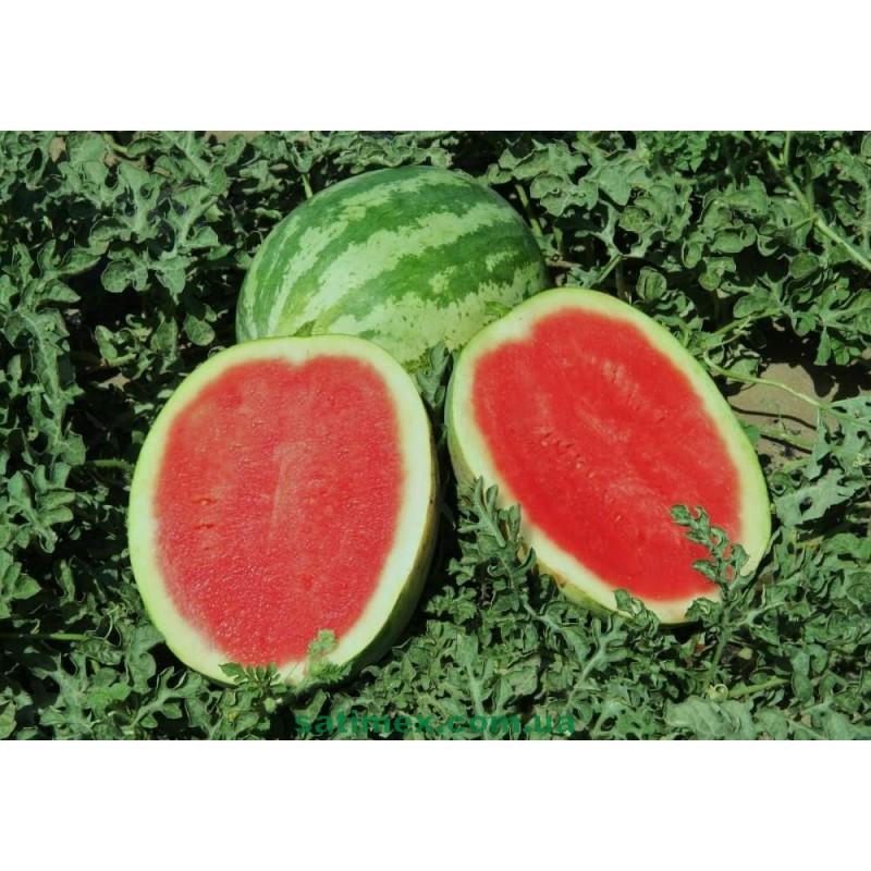 semena-arbuza-krimson-svit