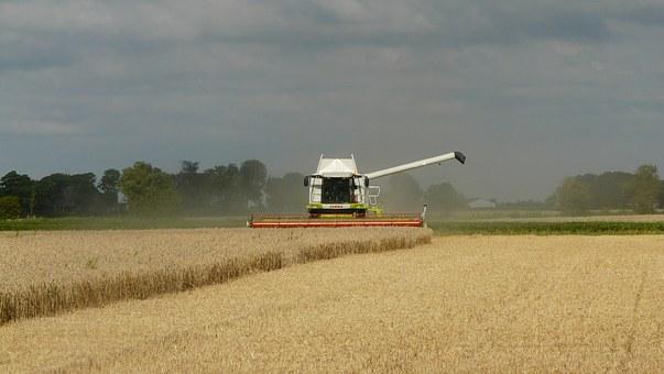 harvest-1523792__340