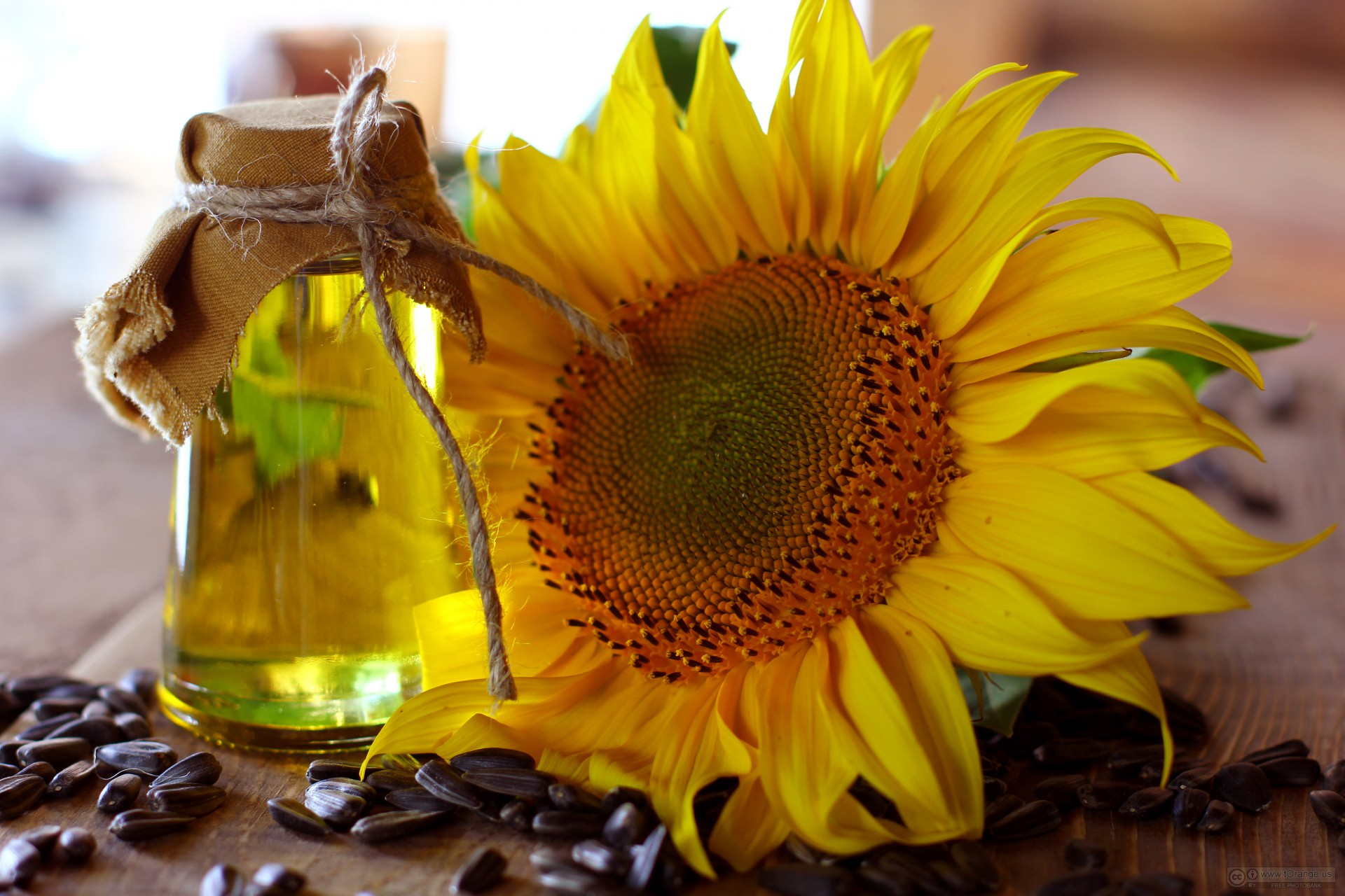 Sunflower_oil_and_sunflower