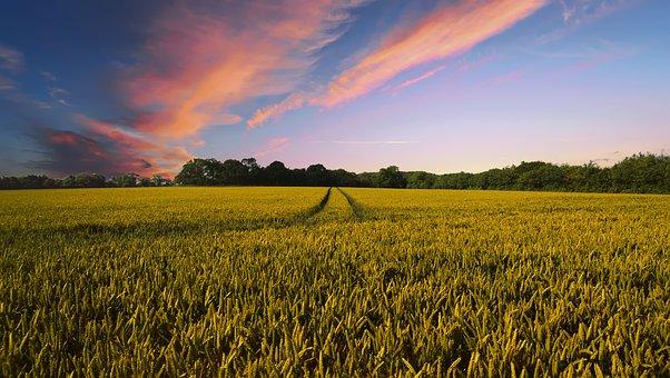 countryside-2326787__340