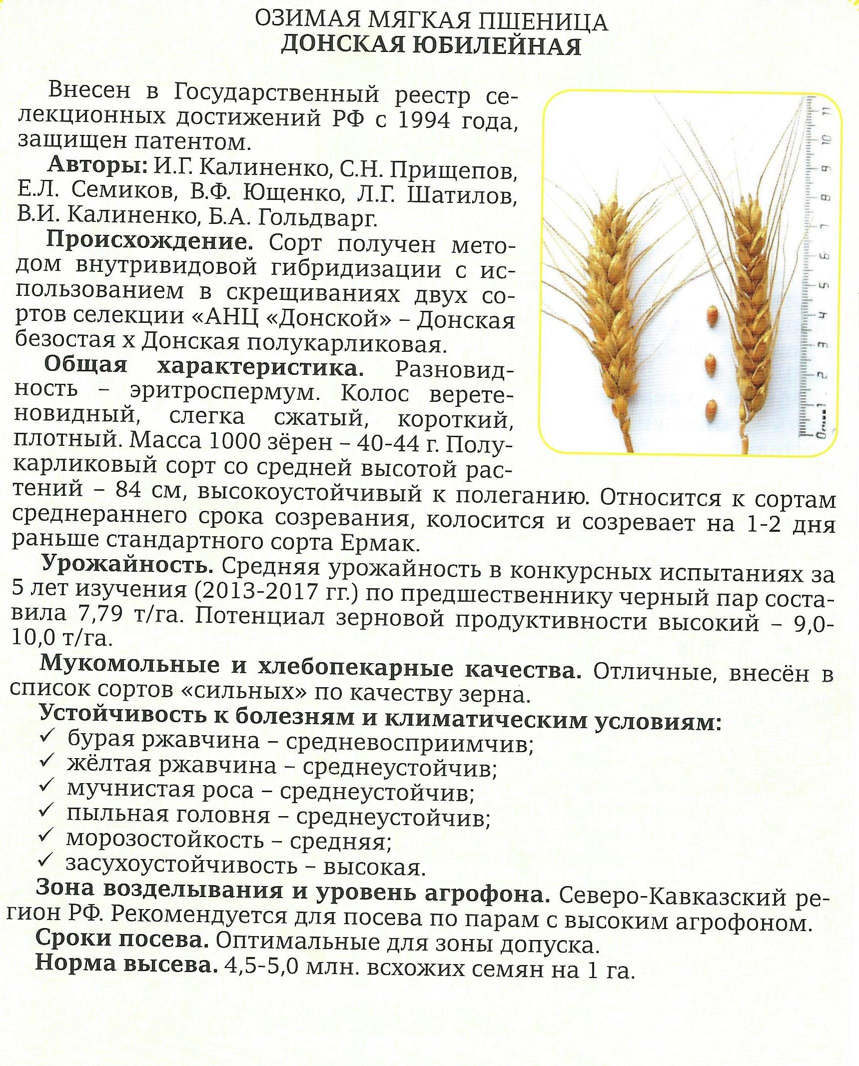 donskaya-yubilejnaya