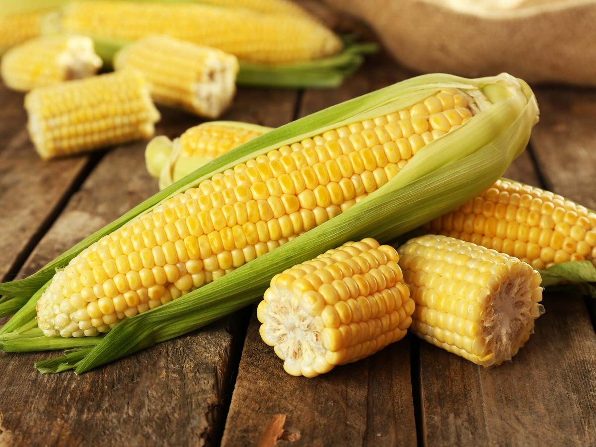 kukuruza-41