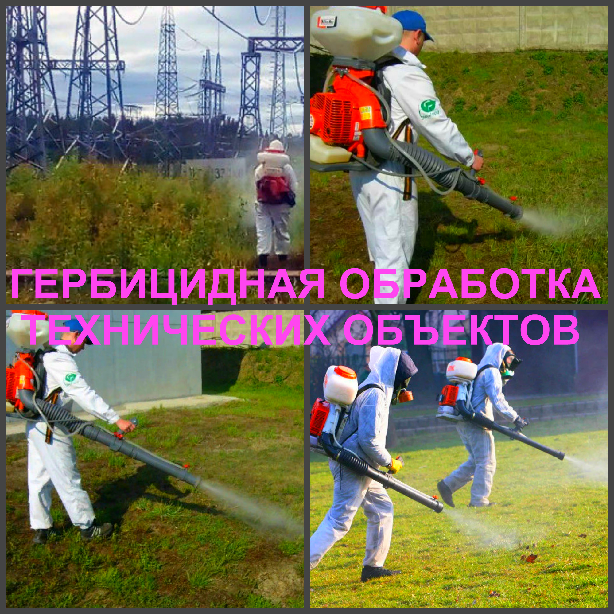 DOSKI-4