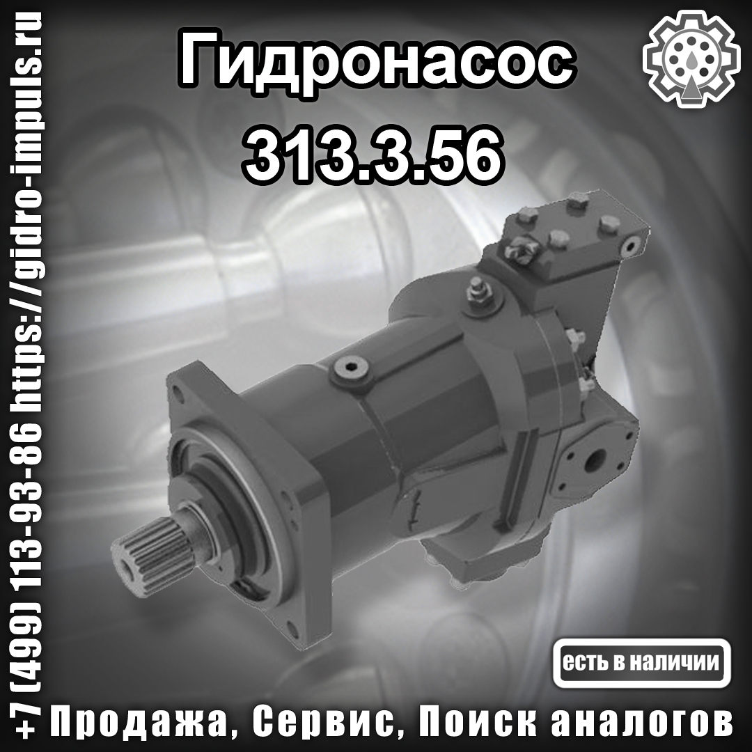 313.3.56
